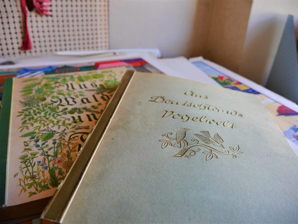Bild von einem Buch ueber die Vogelwelt